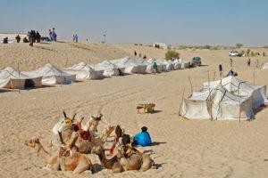 festival au desert camp