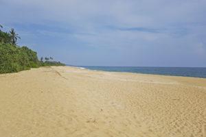 Mangrove beach cabanas strand