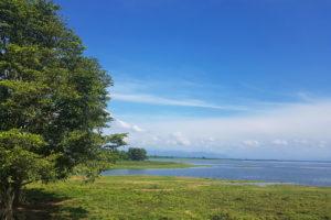 udawalawe lake