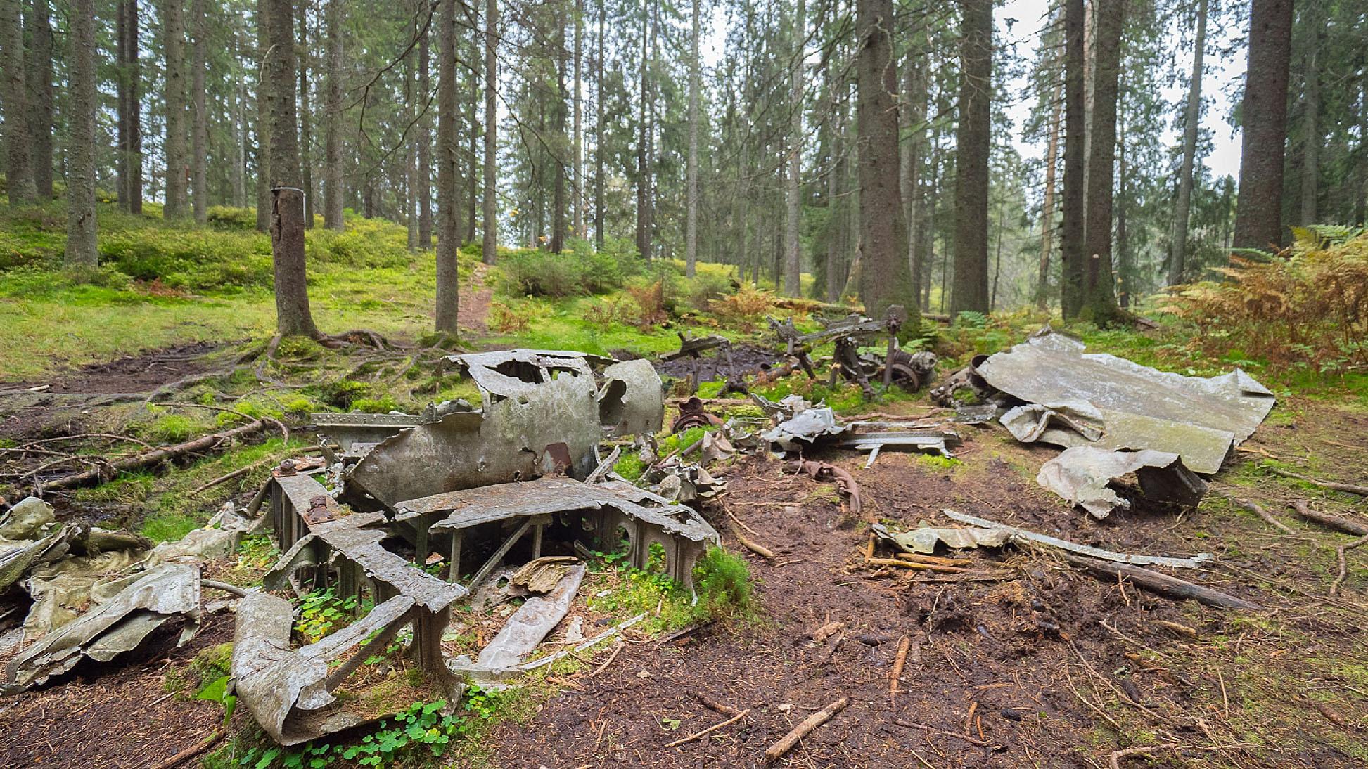 Flyvrak i skogen